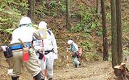 森林整備事業について